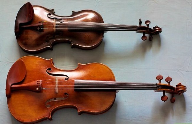 distinguish-between-violins-and-violas